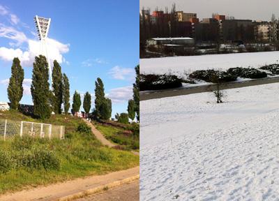 夏と冬、どっちがいいの?