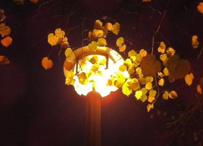 ベルリンの暖かな光