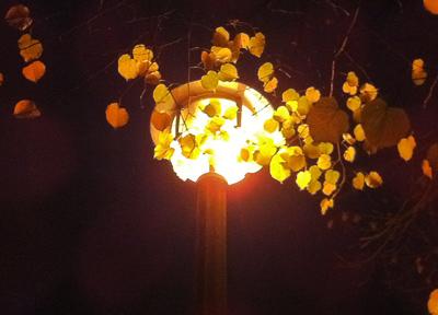 ドイツ照明の美しさ