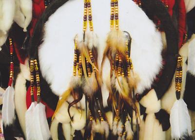 アメリカン・インディアンを訪ねる旅