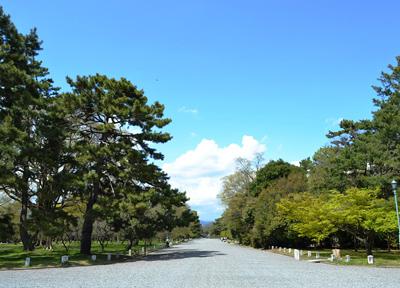 広々とした京都御苑の敷地にて