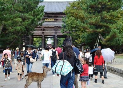 奈良公園と奈良の鹿