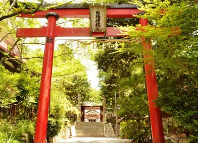 枕をまつる日根神社