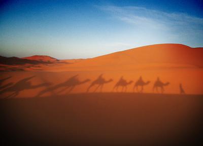 モロッコ ラクダの影が砂丘に落ちる時