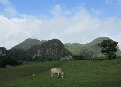 キューバ 恐竜の時代にタイムスリップしたような景色